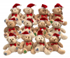 CHRISTMAS TEDDY TOMBOLA PACK